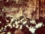 Castiglione (VT) - Il ritorno in scena dalla Festa del Vino più grande della provincia.